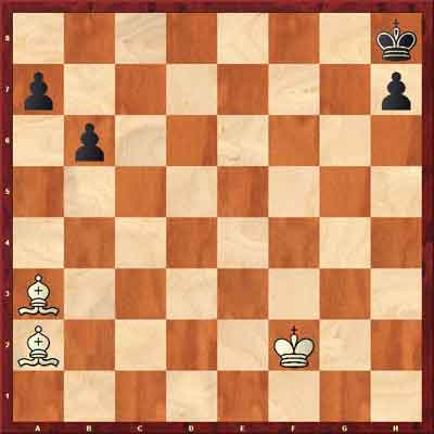 two bishop checkmate