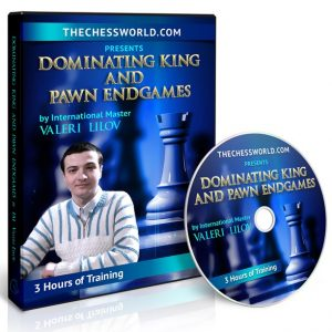 king and pawn endgames