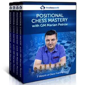 positional chess mastery