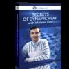 secrets of dinamic play