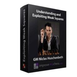 Niclas Huschenbeth Understanding and Exploiting Weak Squares