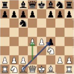 kings gambit nc6