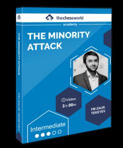 the-minority-attack