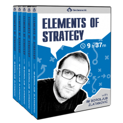 Elements of Strategy with IM Boroljub Zlatanovic
