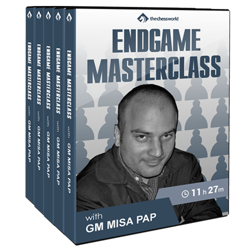 Endgame Masterclass with GM Misa Pap