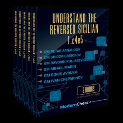 Understand the Reversed Sicilian