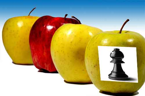Chess diet: eat or play?