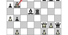 """""""Chess Problems"""" Review"""