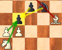 Elephant Trap: Queen's Gambit Declined