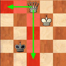 Total Chess: King & Queen vs. King