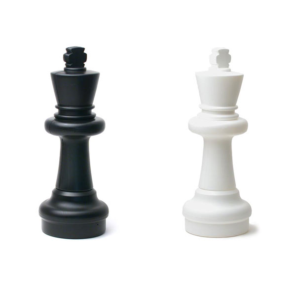 Total Chess: King and Pawn vs. King Endgame