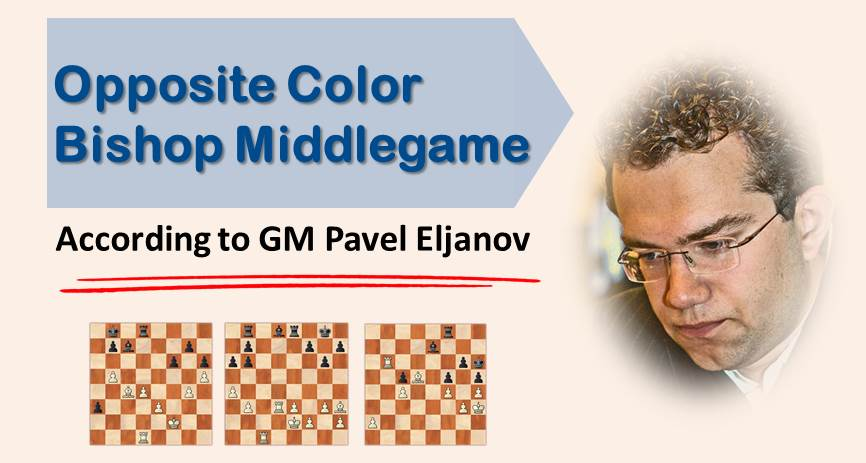 Opposite Color Bishop Middlegames According to GM Pavel Eljanov