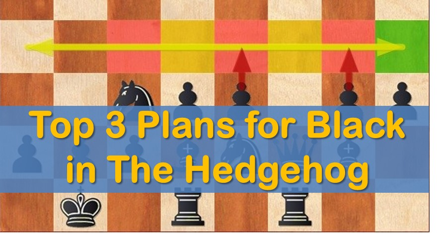 Top 3 Plans for Black in the Hedgehog