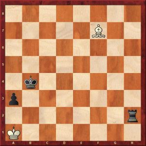 endgame lessons rook and pawn 2