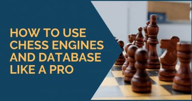 How to Use Chess Engine and Databases Like a Pro