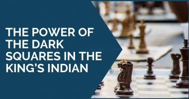 The Power of the Dark Squares in the King's Indian