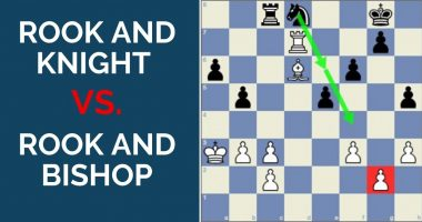 Rook and Knight versus Rook and Bishop Endgames