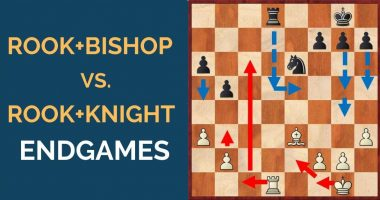 Rook and Bishop vs. Rook and Knight Endgames