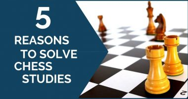 5 Reasons Why You Should Solve Studies