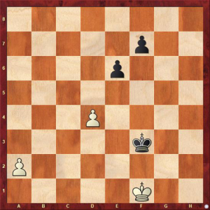 R. Bianchetti White to play