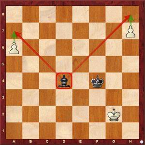 Chess Tactics decoy