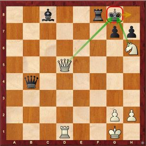 Chess Tactics double check