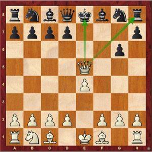 Chess Tactics fork